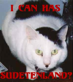 Hitler look-alike cat