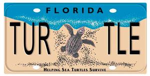 Florida Sea Turtle plate